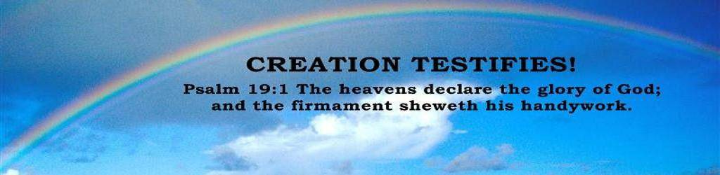 Creation Testifies logo